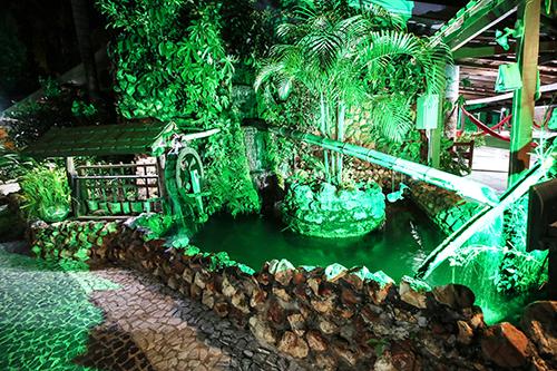 Lago de carpas iluminado